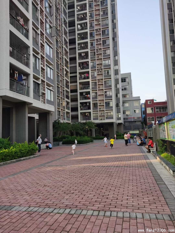 <b>石岩村委统建楼《清雅苑》三房两厅两卫高楼层采光好仅售260万</b>