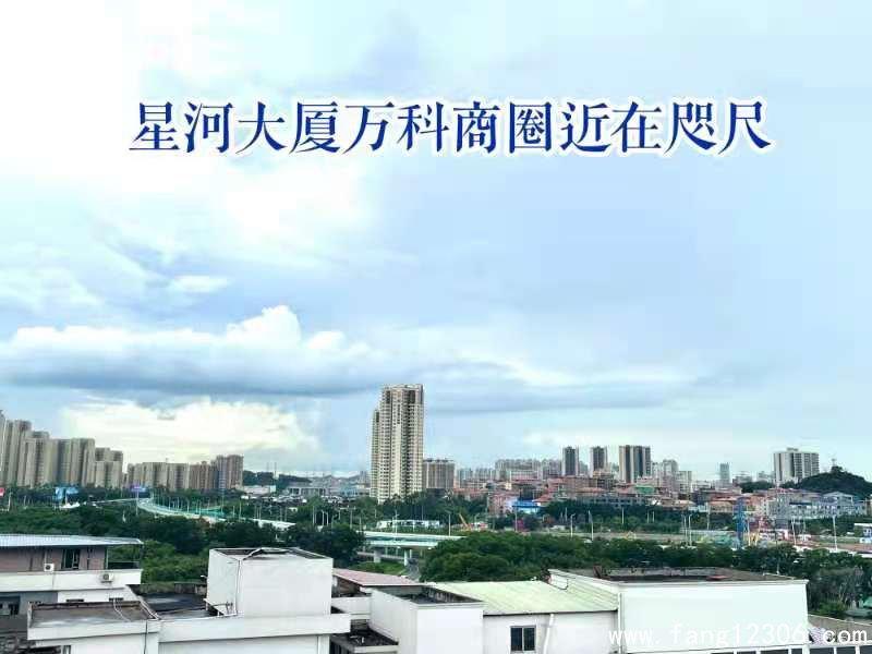 <b>虎门北�拧缎窃舜笙� 》单价4字头起轻松置业滨海湾永久性产权</b>
