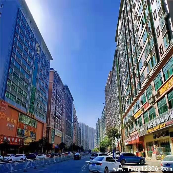 <b>凤岗沃尔玛中心区2大栋统建楼《卧龙公馆》精装交房拎包入住</b>